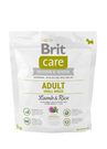 Care II Adult Small Breed Lamb & Rice